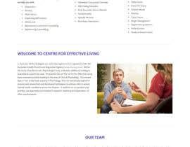Nro 13 kilpailuun Website polish käyttäjältä kethketh