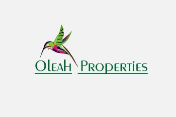 Kilpailutyö #96 kilpailussa Logo Design for Oleah Inc