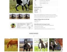 Nro 20 kilpailuun Design a horse searching website käyttäjältä JazibUllah