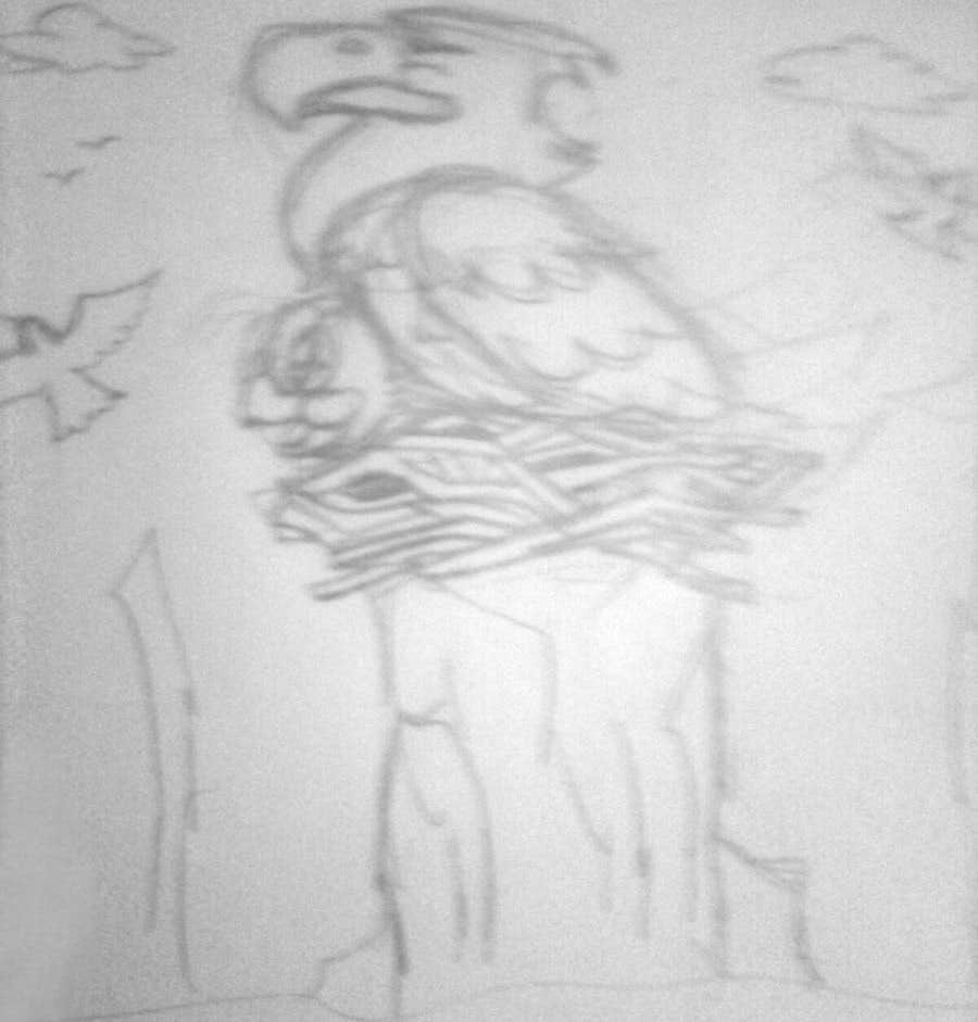 #11 for Illustrating 3 pictures of an eagle baby by v9s2