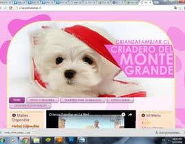 Nro 27 kilpailuun Diseñar un banner käyttäjältä freelancerdez
