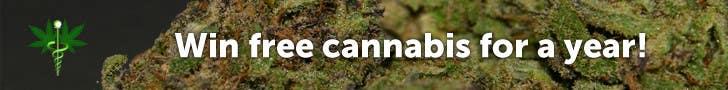 #21 for Design a Banner for Medical Marijuana website by seevald
