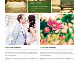 Nro 2 kilpailuun Website Portfolio Pages käyttäjältä chiqueylim