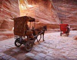 #5 cho Walking Tour of Petra! bởi mamtasethi8