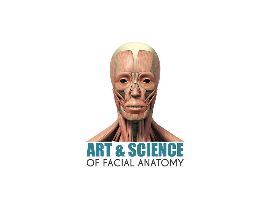 Entry 41 By Luismiguelvale For Logo For Face Anatomy Cross Section