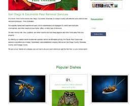 Nro 21 kilpailuun Homepage Design Mockup käyttäjältä timmokm