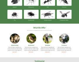 Nro 22 kilpailuun Homepage Design Mockup käyttäjältä phamtech211