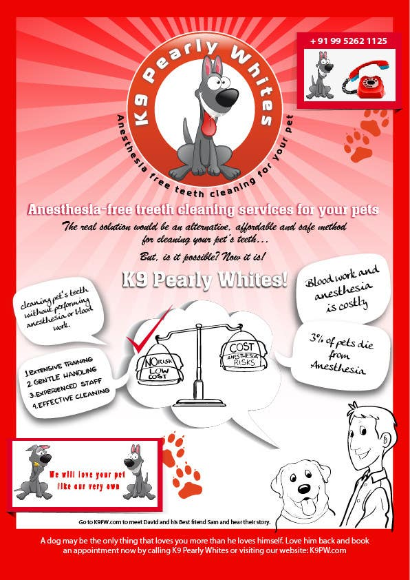 Contest Entry #                                        2                                      for                                         Flyer Design for K9 Pearly Whites [K9PW.com]
