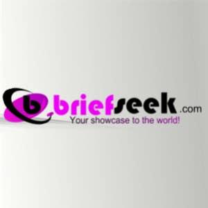 Proposition n°                                        843                                      du concours                                         Logo design for: Briefseek