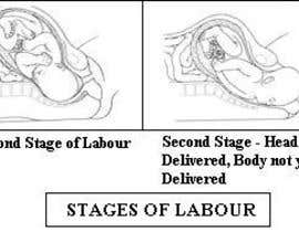#13 untuk Illustrate timeline of pregnancy with 4 stages of testing oleh Venkatcg