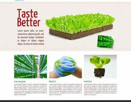 #4 untuk Design a Website Mockup for Hydroponic plant food oleh ravelloasociados