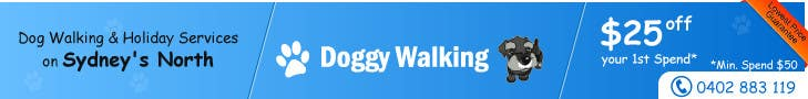 #35 for Design a Static Leaderboard Banner for Dog Walking Business by threedrajib