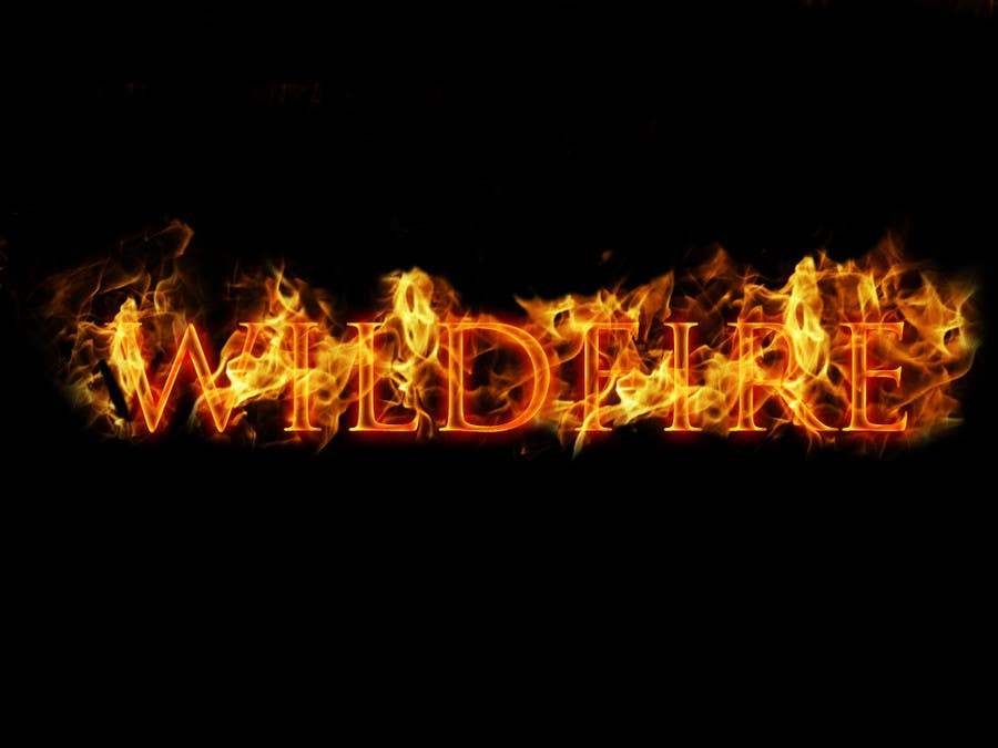 "#3 for Design a text Logo for ""Wildfire"" by hoanghuy812"