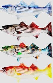 vishvjeetcheema tarafından Create fish art from photographs için no 11