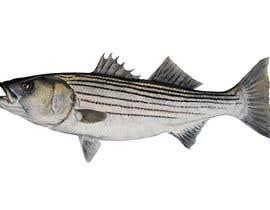 terstill tarafından Create fish art from photographs için no 22