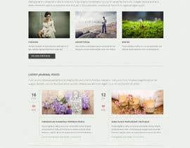 #10 para Website Design por amisha90
