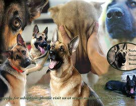 #9 para Design a Banner for Southeast German Shepherd Rescue Website por bogdan0507