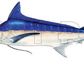 unsoftmanbox tarafından Illustrate 3 species of fish to be used for embroidery için no 7