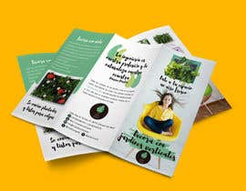 escarpia tarafından Diseñar un folleto için no 27