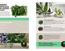 margaeva tarafından Diseñar un folleto için no 19