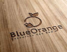 #74 for Design a Logo for Blue Orange Resources S/B by AWAIS0