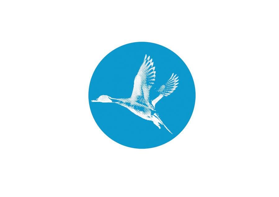 Penyertaan Peraduan #                                        6                                      untuk                                         Pintail Duck