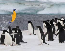 #25 cho Alter penguin image bởi koshal44