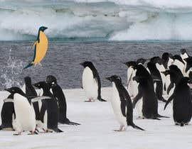 #15 cho Alter penguin image bởi Ronvick