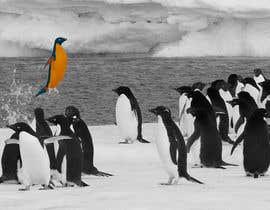 #3 cho Alter penguin image bởi vndesign2013