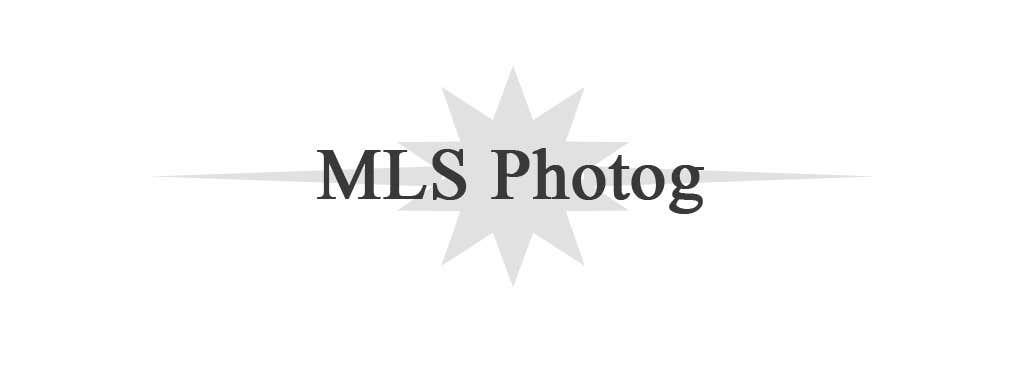 Inscrição nº                                         43                                      do Concurso para                                         Design a Logo for MLS Photog