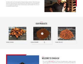 nº 21 pour New look for our site par zaxsol
