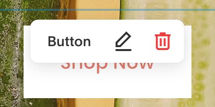 squarespace button text