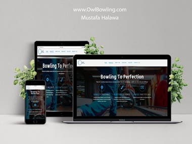 OwlBowling.com Website design.