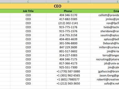 Accounting & CPA leads, CEO leads, Engineer's leads, Texas leads