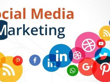 I am a professional Digital Marketing Expert, E-mail marketing ,Facebook Ads marketing , Google Ads marketing , SEO , Link Builder, Virtual Assistant ,Social Media Marketer. I always give my best to my clients or buyers. I do my job until my client is satisfied and my work is a standard that is acceptable to all buyers. My goal is to keep my buyer or client satisfied at all times. So if you need any help with your work or project feel free to inform me. My skill and honesty will impress you. I will definitely help you.