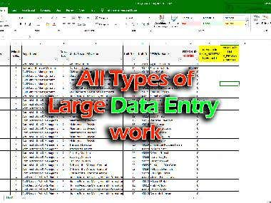 I will do complete all types of large data entry work.