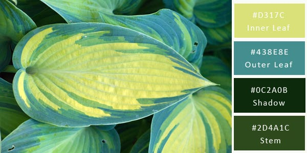 green color combination - leaves