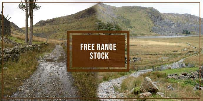 Two free, awesome pictures taken from Free Range Stock