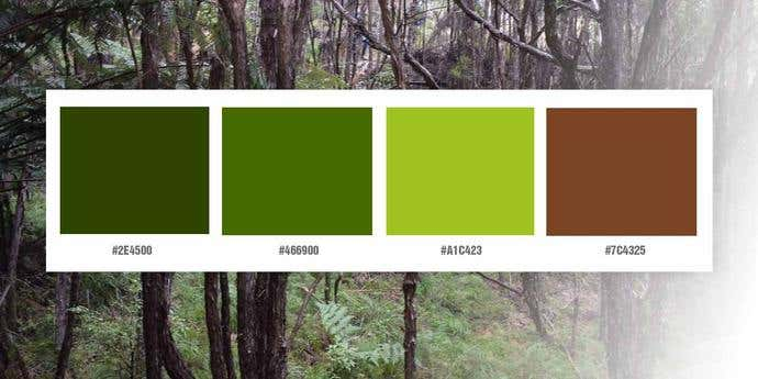Outdoorsy and Natural Color Palette