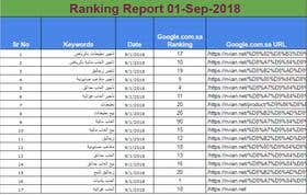 SEO Ranking Report