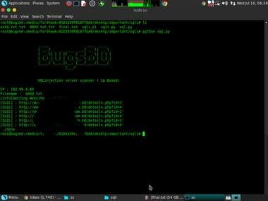 Find OWASP 10 ten vulnerability and CMS vulnerability...