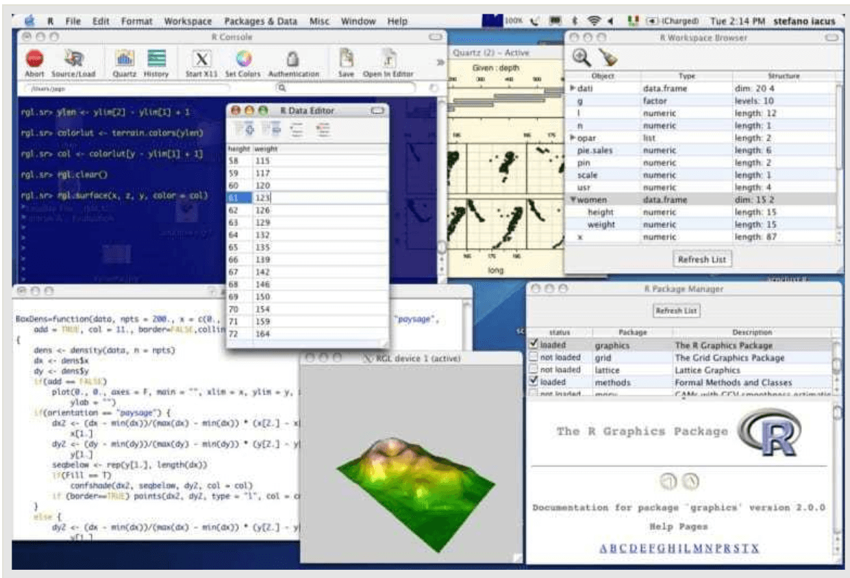 r software screenshot