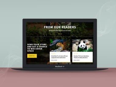Wordpress Magazine/Blog Website
