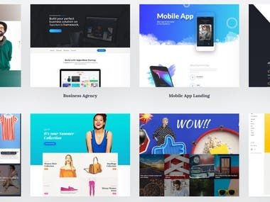 Website Templates designed from scratch for various niches.