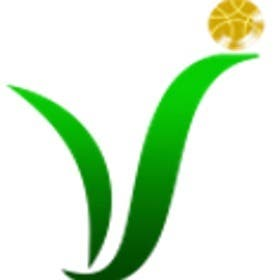 Profile image of virtuosoit