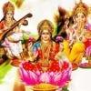 maankanwarlodha's Profile Picture