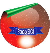 Profile image of pandey2008