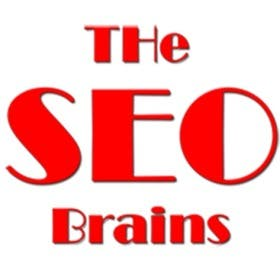 Profile image of theseobrains