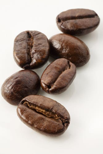 Profile image of robusta