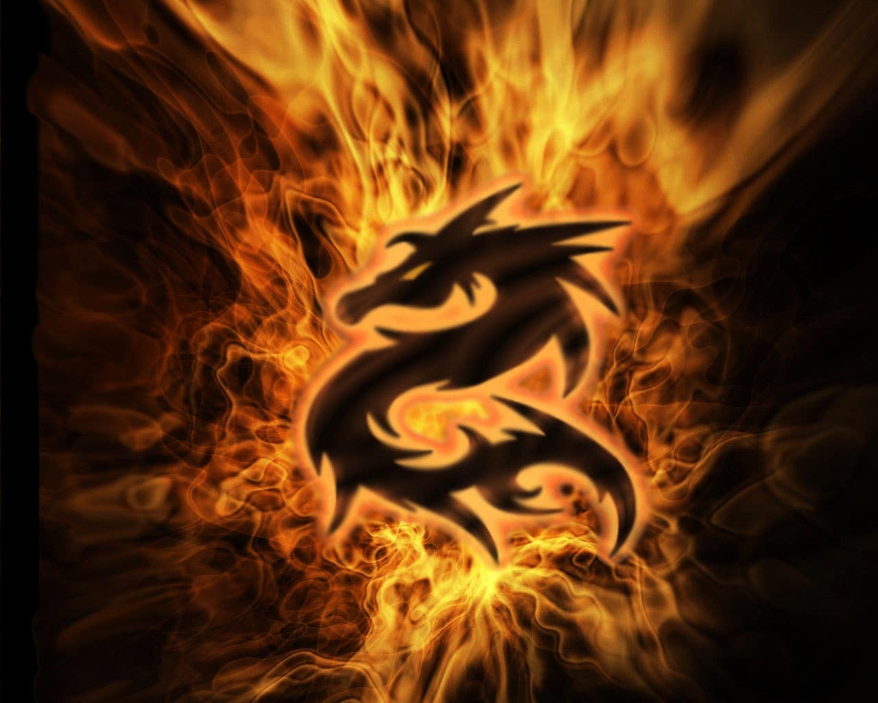 Profile image of dragonfire910